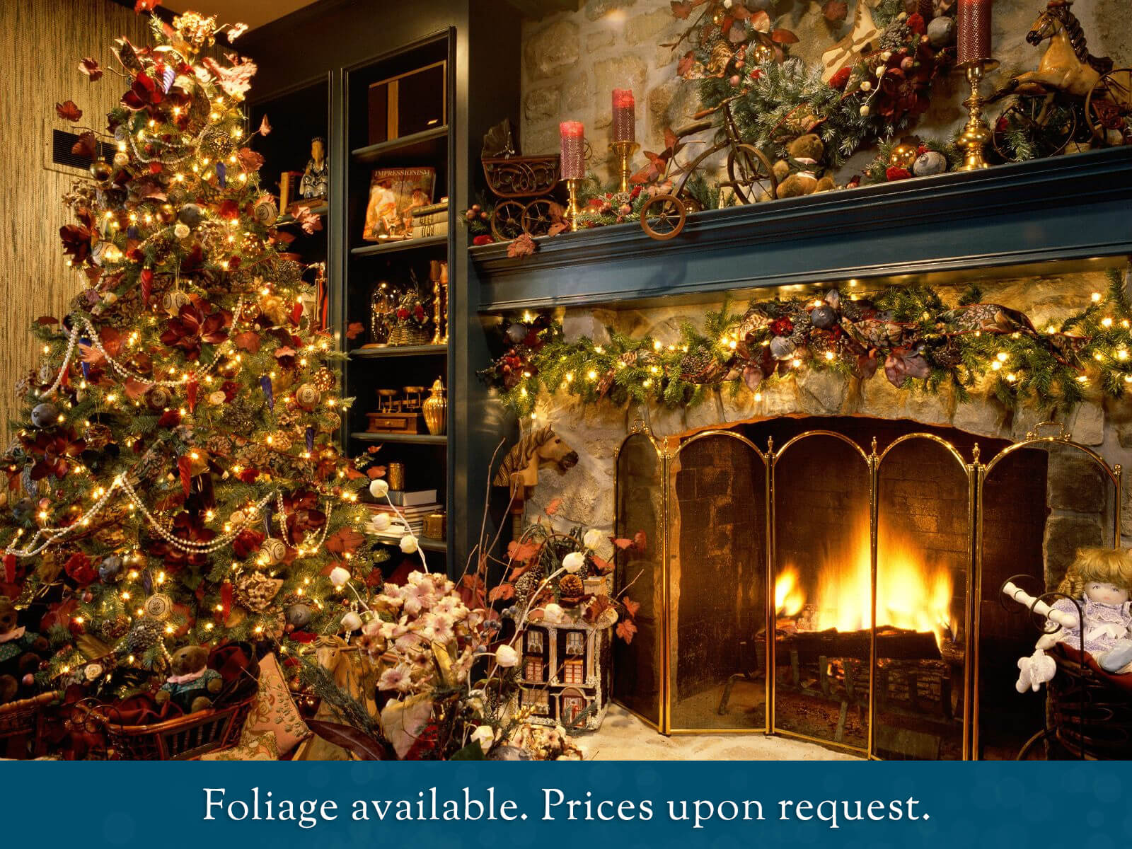 Choose your own real Christmas Tree | Carn na Coille, Christmas Tree ...